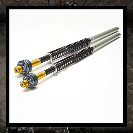 Andreani fork kit (water cooled)